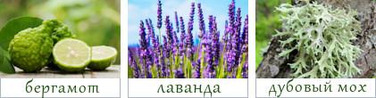 основные ноты парфюма Умо Феличе от Фаберлик