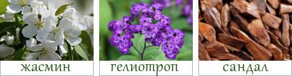 pnotes-yudashkin-gold2