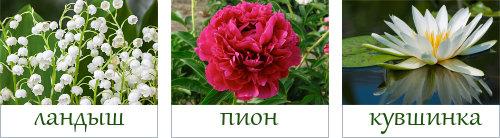 Faberlic by Valentin Yudashkin Rose - основные ноты аромата