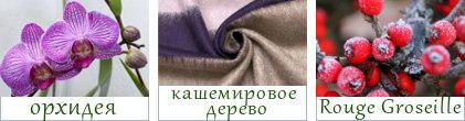 Основные ноты парфюма Рената